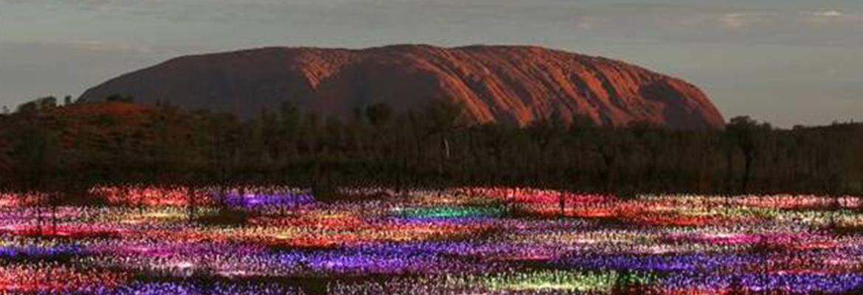 ULURU - FIELD OF LIGHT - THE OLGAS - ALICE SPRINGS